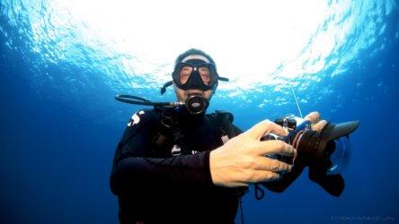 Justin Hartrey Diving Portrait